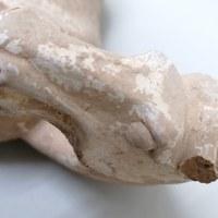 restauratie tang paard 1.jpg