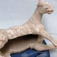 restauratie tang paard 2.jpg